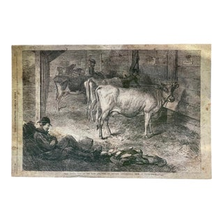 The London Illustrated News June 19, 1869 Prize Jersey Cows Print by GB Goddard For Sale