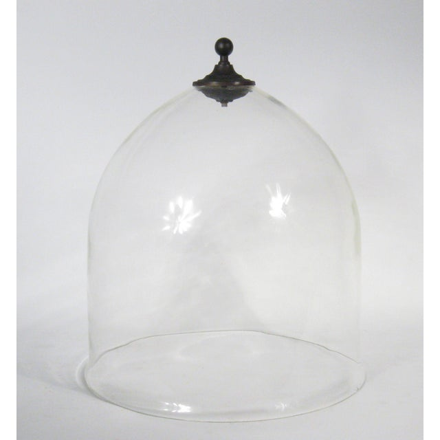 Grand Garden Cloche For Sale In New York - Image 6 of 6