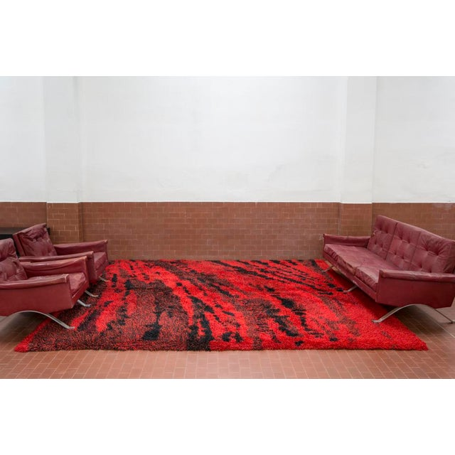"Mid-Century Modern Marvelous ""Orfeo"" Wool Carpet by Renata Bonfanti For Sale - Image 3 of 8"