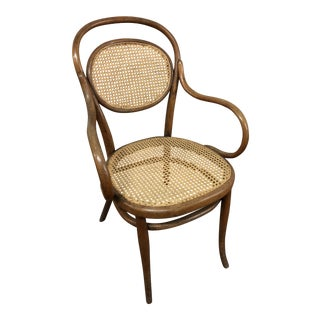 Vintage Bentwood & Caned Arm Chair by Thonet For Sale