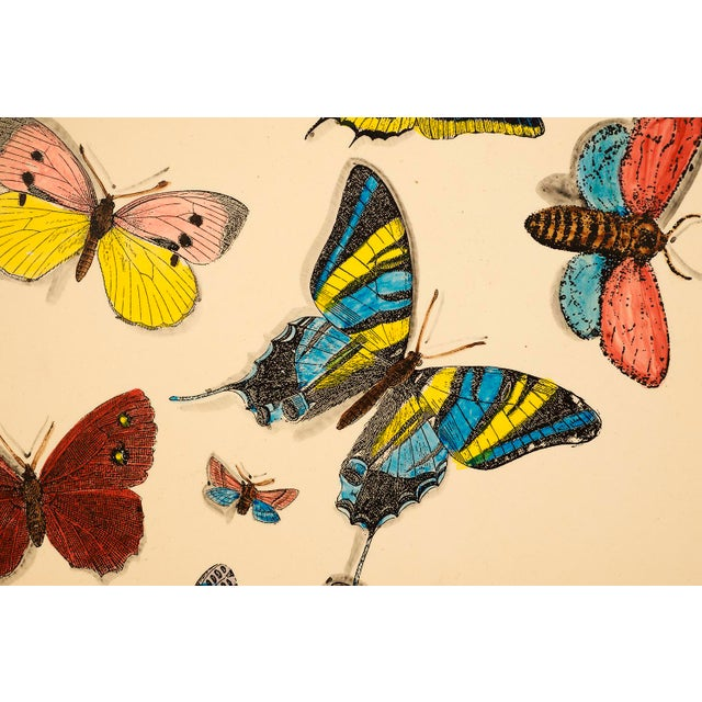 Metal 1950s Piero Fornasetti Butterfly Motif Serving Tray For Sale - Image 7 of 9