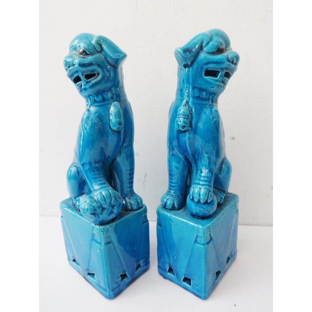 Turquoise Porcelain Foo Dogs - A Pair - Image 3 of 7