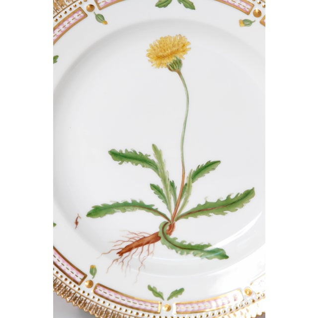 Pair of Flora Danica Plates by Royal Copenhagen #20/3573 and #20/3549 For Sale In Dallas - Image 6 of 13