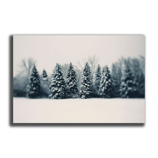 "Alicia Bock ""Winter and Woods"" Floating Print - Image 2 of 2"