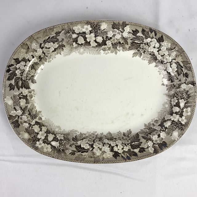English 19th C. Wedgwood Platters, Pair For Sale - Image 3 of 7