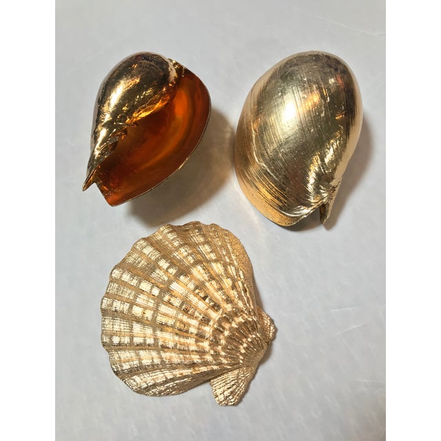 Contemporary Large 1980's Gold Plated Shells - Set of 3 For Sale - Image 3 of 3