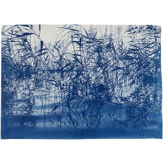 """Cyanotype of """"Mystic Louisiana Marsh"""" / 50x70cm / Handrinted on Watercolor Paper / Limited Edition For Sale"""