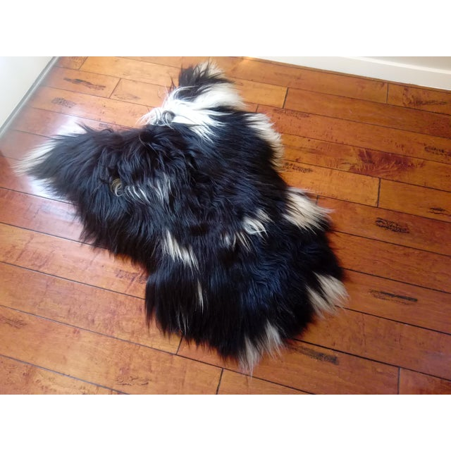 African Gambrell Renard Black and White Sheepskin For Sale - Image 3 of 3