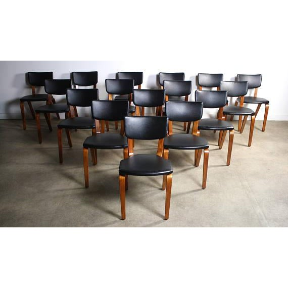 Mid-Century Modern Thonet Bentwood Chairs - Set of 16 For Sale - Image 3 of 5