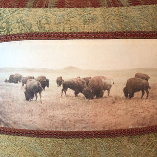 Buffalo Grazing North Montana Landscape Pillow Preview