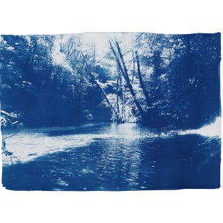 "Hanprinted Cyanotype ""Scandinavian Enchanted Forest"" on Watercolor Paper, 50x70cm, Limited Edition For Sale"