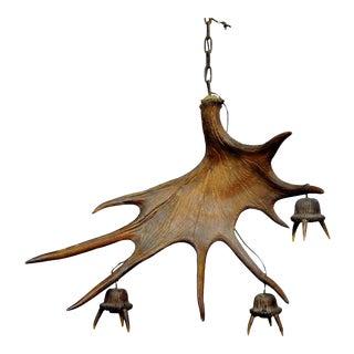 A Large Sculptural Antique Moose Antler Chandelier For Sale