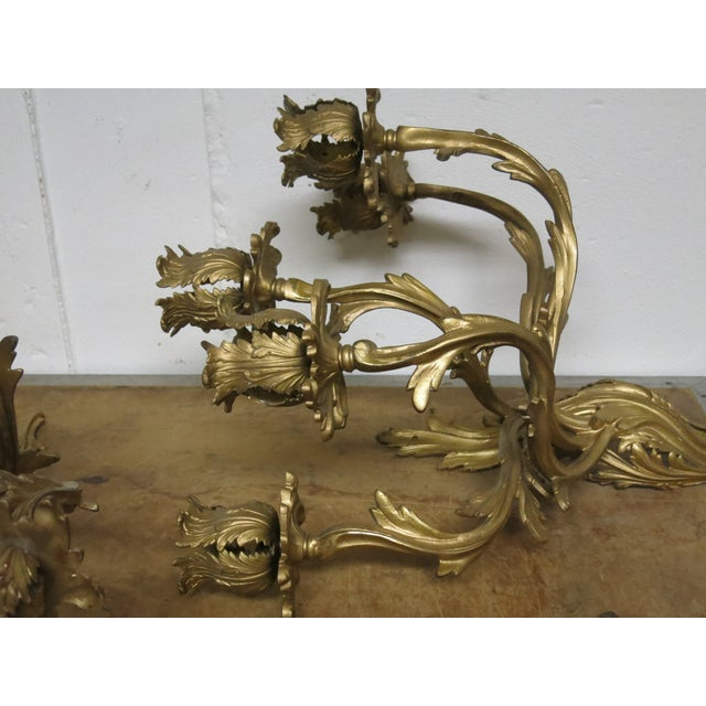 Metal Early 20th Century Gilt French Sconces Louis the XV Style - a Pair For Sale - Image 7 of 8