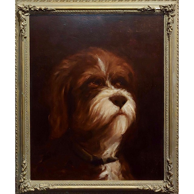"19th century Portrait of a fluffy Dog - Oil painting Oil painting on board -Signed circa 1860/80s frame size 15 x 17""..."