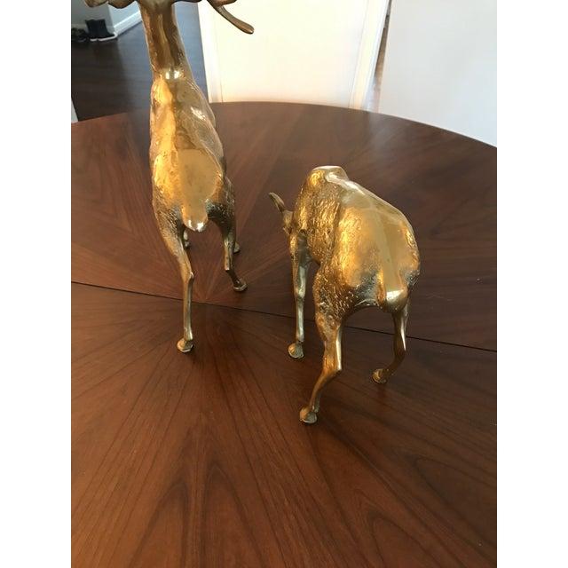 Vintage Brass Deer Figurines - A Pair - Image 5 of 6