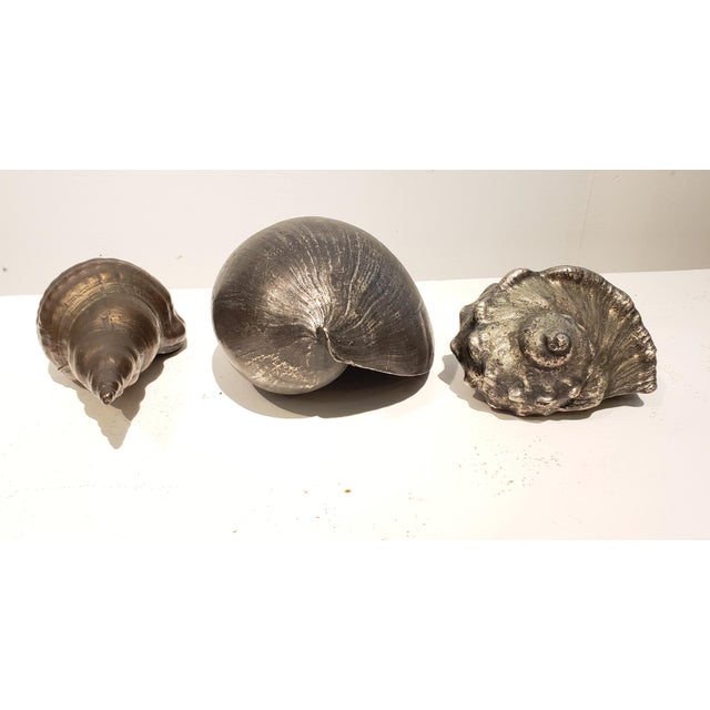 Large Vintage Italian Silvered Bronze Seashells- Set of 3 For Sale - Image 10 of 12