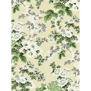 Sample, Scalamandre Ascot Floral Print, Verdure Wallpaper For Sale