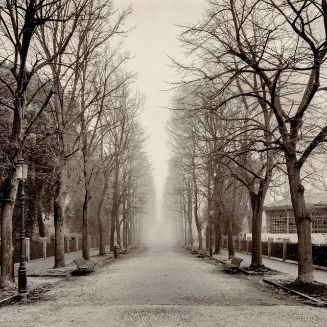 """2000 - 2009 """"Castello Street, Venice"""" Contemporary Sepia Photograph by Guy Sargent For Sale - Image 5 of 5"""
