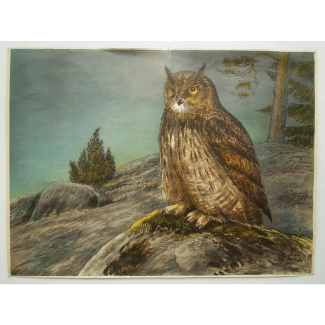 1960s Swedish Vintage Owls School Poster by Nils Tirén, 1960s For Sale - Image 5 of 7