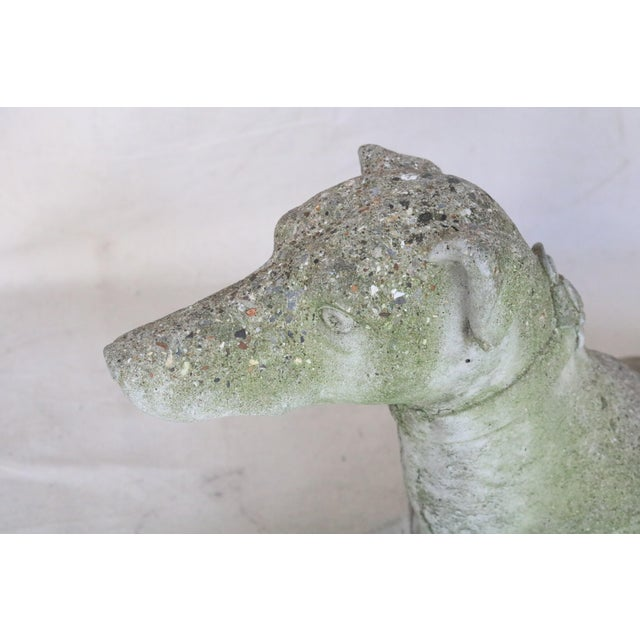 Early 20th Century Early 20th Century Reclining Whippet English Cast Stone Garden Ornament For Sale - Image 5 of 8