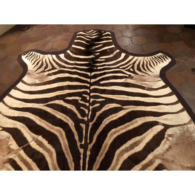 1960s Vintage Burchell Zebra Rug For Sale In New York - Image 6 of 12