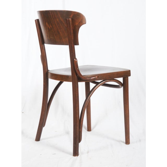 Bentwood Chairs by Thonet, 1930s - Set of 4 For Sale - Image 6 of 9