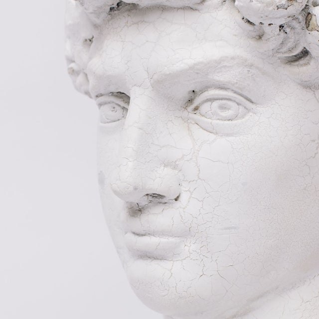 Plaster Grecian Head Sculpture For Sale - Image 5 of 5