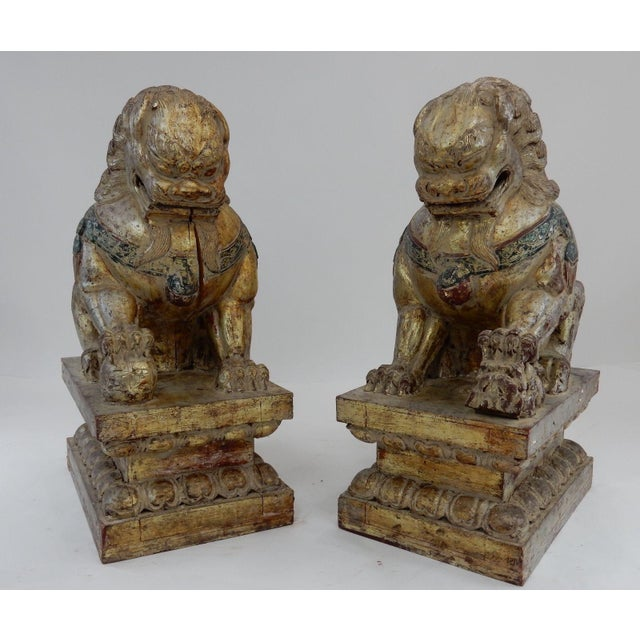 Gorgeous Pair of Colossal Antique Chinese Gold and Silver Leaf Foo dogs. Gold and Silver leaf on these beauties. These...