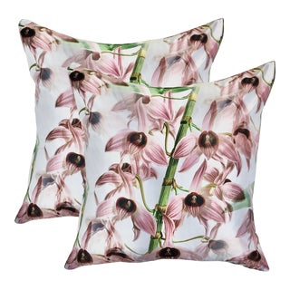 Orchid Dendrobium Microphyllus Pillows - a Pair For Sale