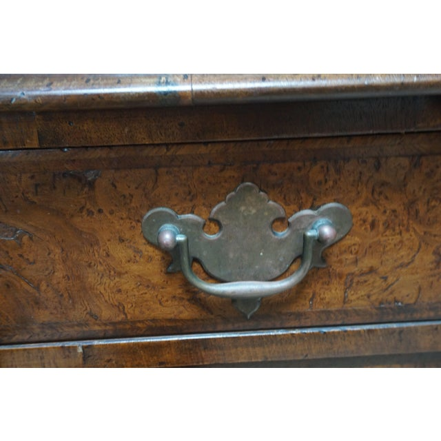 Details: Mid nineteenth century English burlwood veneer chest with glass covered overhanging top and molded rim on a...