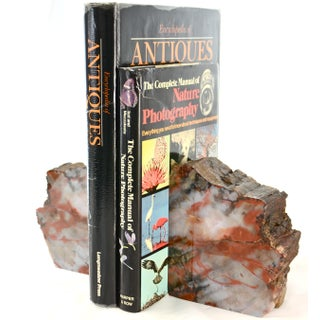 Iron Red Petrified Wood Slice Bookends - A Pair Preview