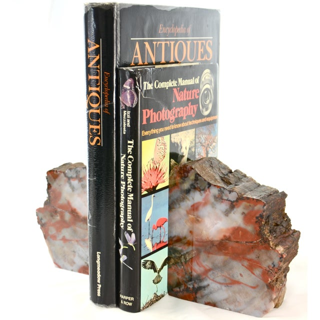 Beautiful and substantial, these large vintage petrified wood bookends are statement pieces with thick-cut and polished...