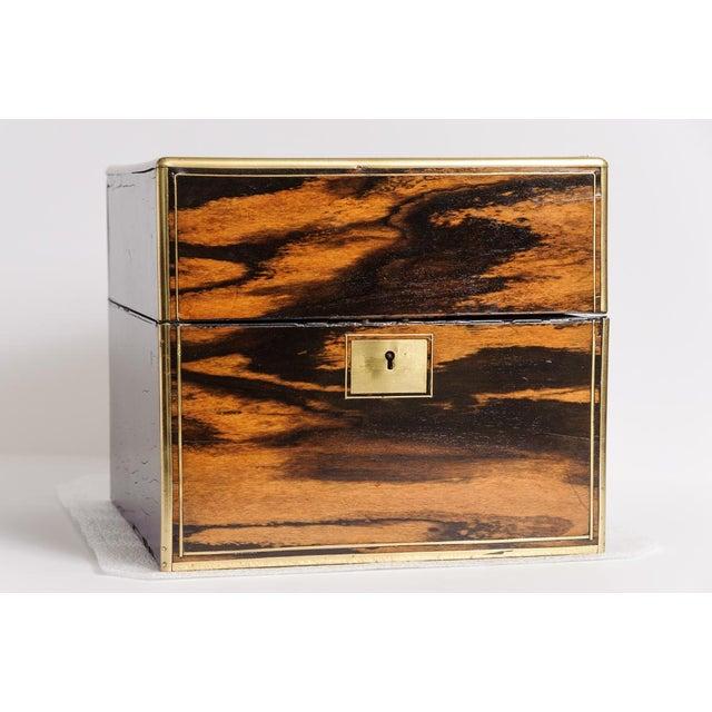 English coromandel wood, cellarette box. C.1840