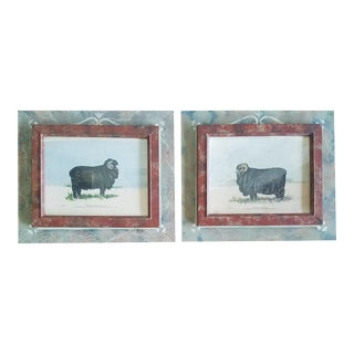 """1980s Avil Company """"Merino Ram"""" Lithographs - A Pair For Sale"""