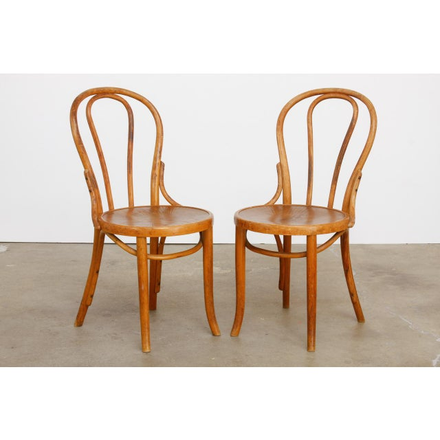 Bentwood Michael Thonet No. 18 Bentwood Viennese Cafe Chairs - a Pair For Sale - Image 7 of 13