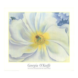 Georgia O'Keeffe- White Flower For Sale