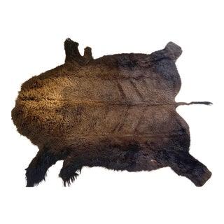 Bison Hide Rug - 5′4″ × 6′9″ For Sale