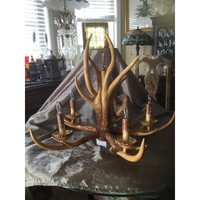 Country Deer Antler Chandelier For Sale - Image 3 of 10