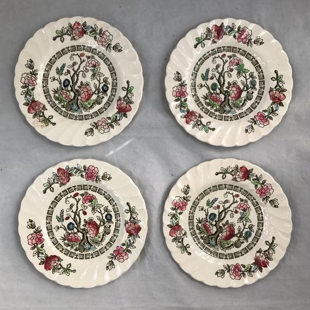 Myott English Staffordshire Bread & Butter Plates - Set of 4 - Image 2 of 5