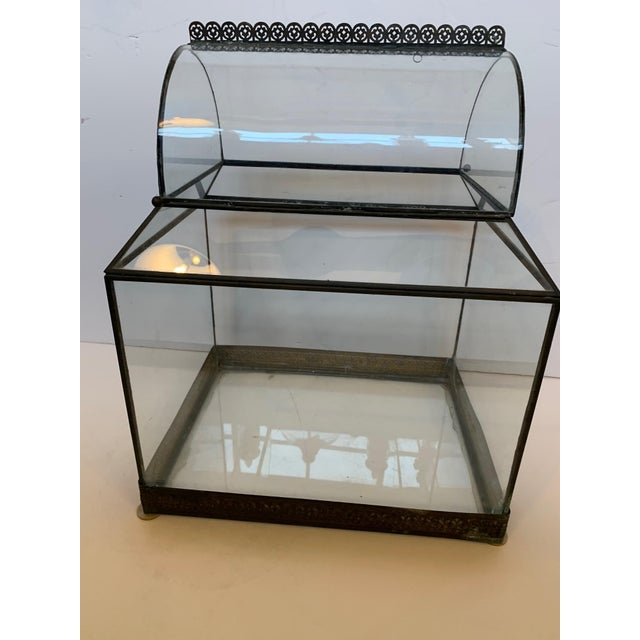 1940s Vintage Glass and Metal Terrarium For Sale - Image 5 of 9