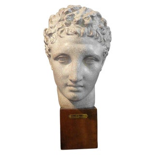 "French ""Hermes"" Patinated Plaster Bust Sculpture on a Wood Base For Sale"