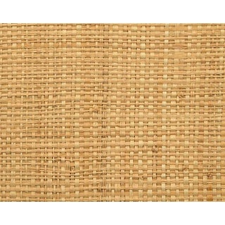 Hinson for the House of Scalamandre Hinson Madagascar - Fine Wallpaper in Natural For Sale