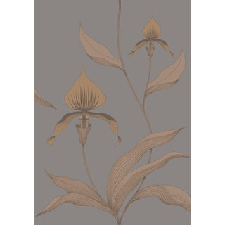Cole & Son Orchid Wallpaper Roll - Bronze/Slate For Sale