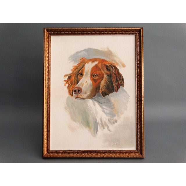 A beloved springer spaniel sporting dog portrait, original oil on canvas board. The talented artist has executed with nice...