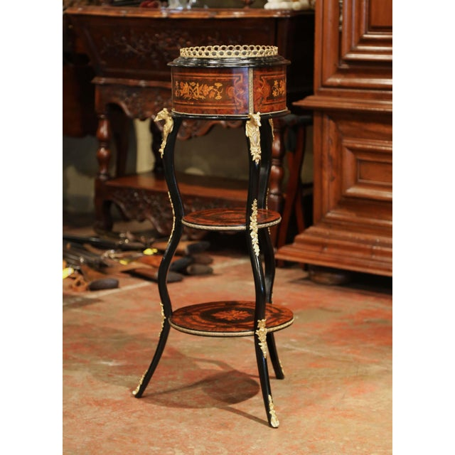 Metal 19th Century, French Napoleon III Inlay Rosewood Plant Stand With Brass Mounts For Sale - Image 7 of 9