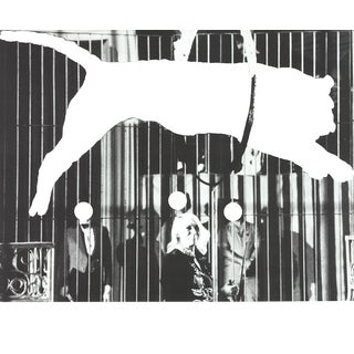John Baldessari-Tiger with No Stripes-2017 Poster For Sale
