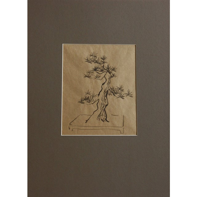 Bonsai Tree Drawing For Sale