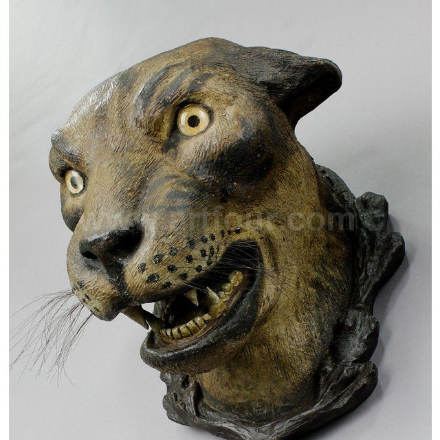 A Gorgeous Pair Of Leopard Heads, Austria Ca. 1890 For Sale - Image 9 of 12