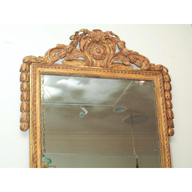 Finely Carved Louis XVI Style Mirror - Image 7 of 8