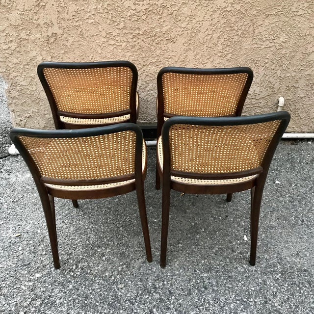 Thonet 1930s Vintage Thonet Caned Cafe Chairs- Set of 4 For Sale - Image 4 of 9